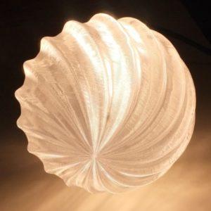 bulb403_7501-1.jpg